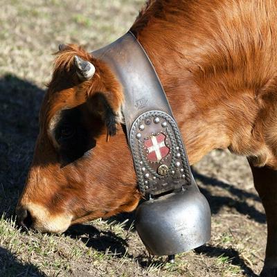 6 la vache savoyarde