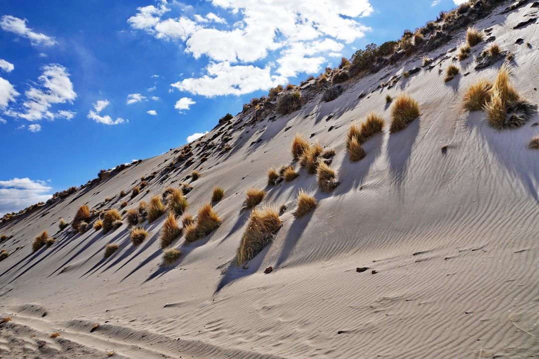 Altiplano-01
