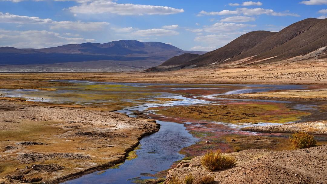 Altiplano-11