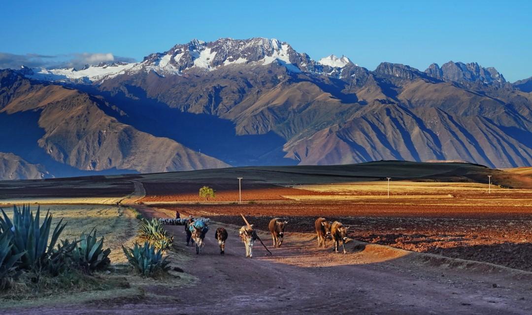 Altiplano-13
