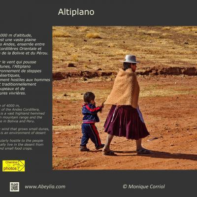 Altiplano - Monique Corriol à Alaigne