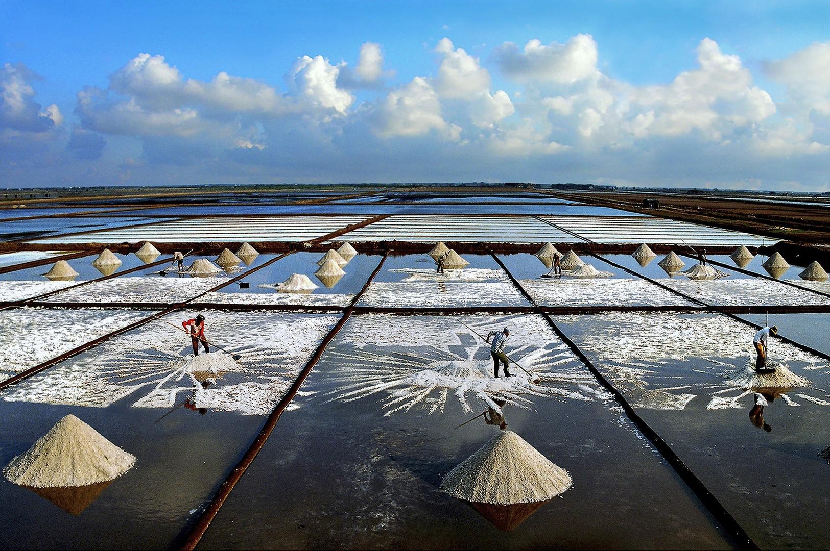 Auteur le duc toai havrvesting salt copier