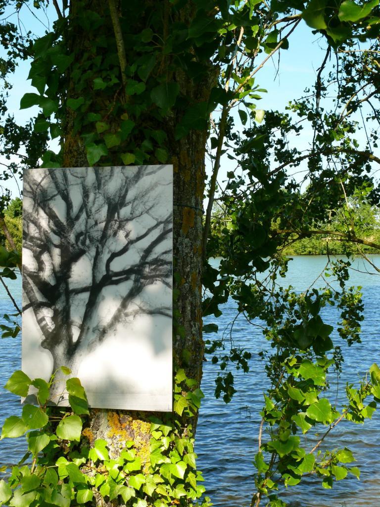 Forêtstyle du Collectif Vertige au Camping les Brugues - Fanjeaux.