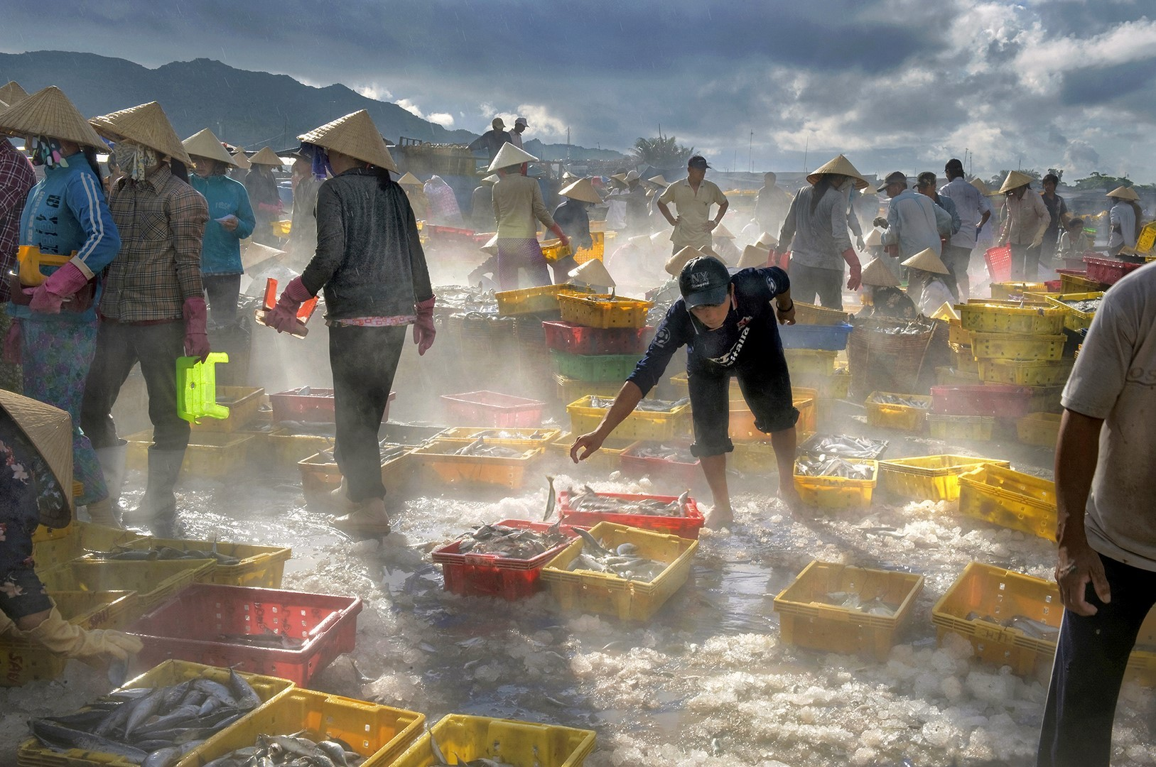 Fish market hoang trung thuy copier