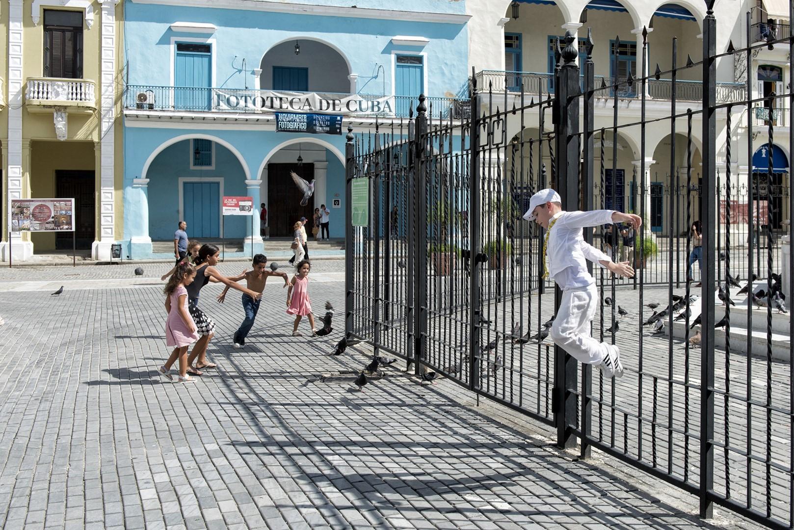 Habana 55