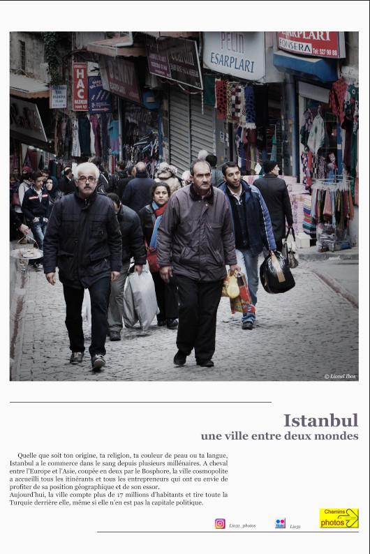 Istanbul - Lionel Ibos à Villasavary, jardin Domer