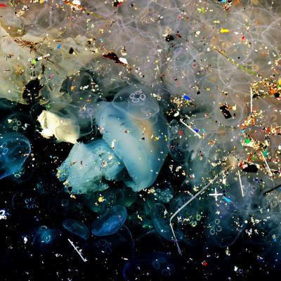 Jellyfish13 copier