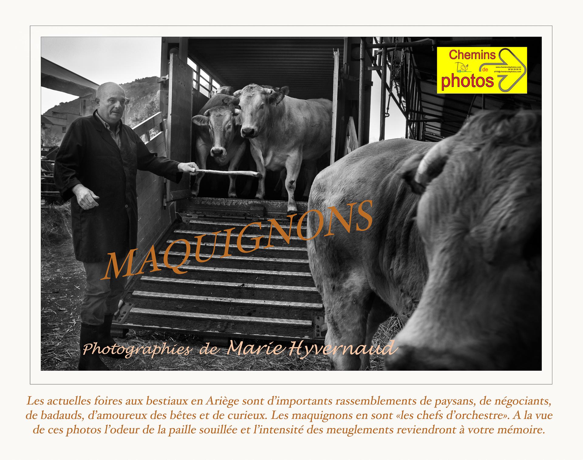 Maquignons - Marie Hyvernaud à Hounoux