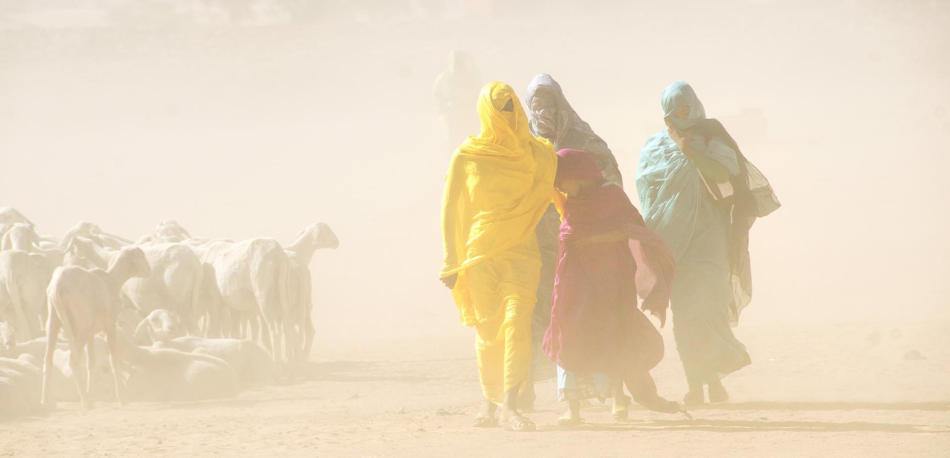 Mauritanie, de Francis Tack