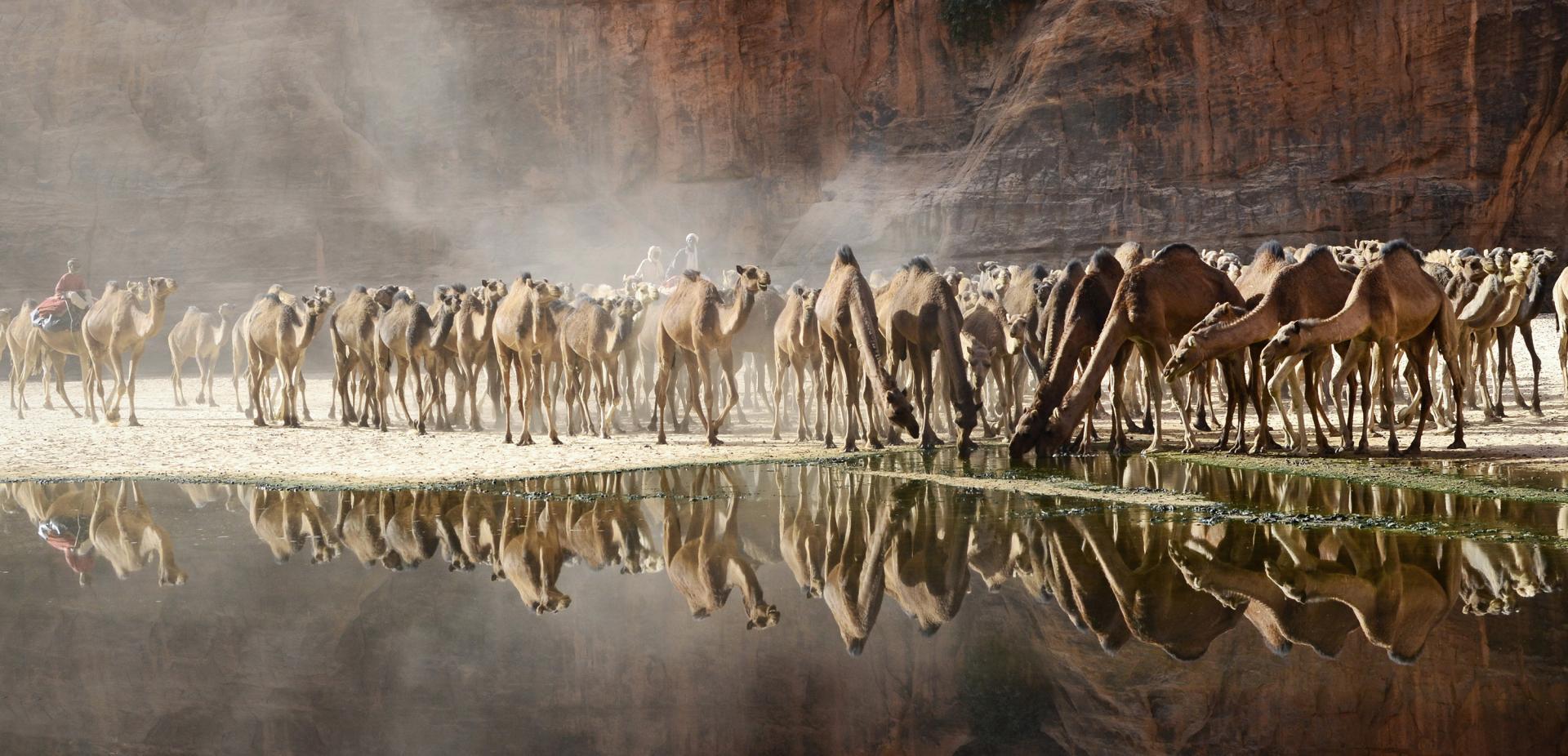 La Tchad et l'eau, de Marie-José Tack