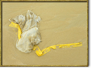 Catalo - Sirènes de Bien Dong