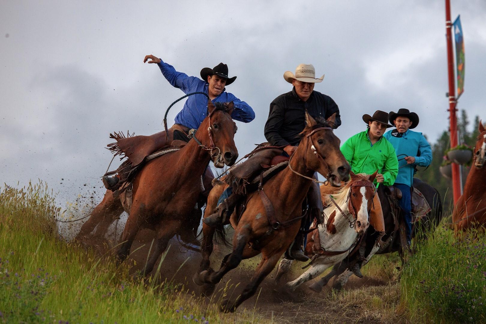 Racing horses natif