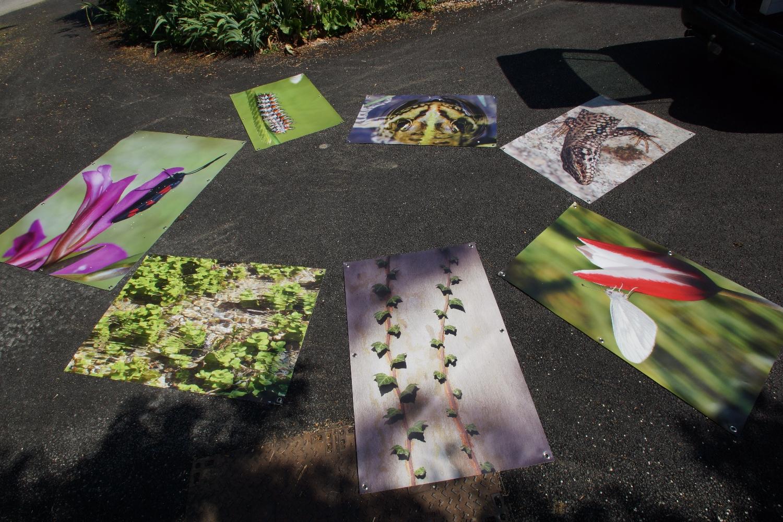 2015 0602 installation expo escueillens roumengoux0026