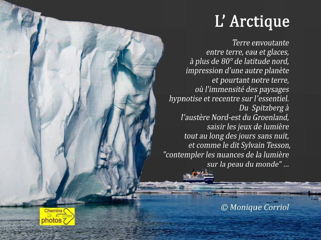 Corriol arctique