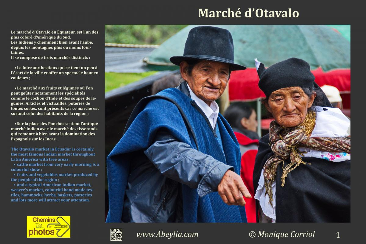 Corriol marcheotavalo