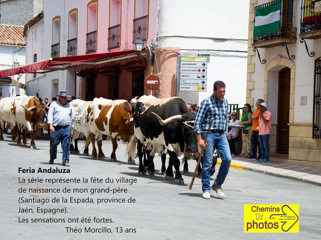 Morcillo village andalou