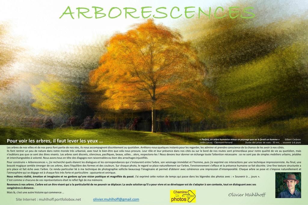 Muhlhoff arborescence