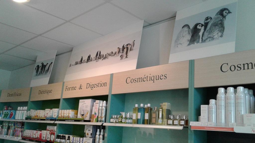 Pharmacie fanjeaux 1